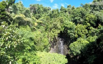 siargao falls